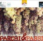 https://www.tp24.it/immagini_articoli/07-12-2018/1544185873-0-pantelleria-partecipa-prima-edizione-parchipassiti-unisce-cinque-terre.jpg