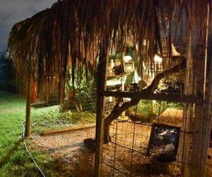 https://www.tp24.it/immagini_articoli/07-12-2018/1544197131-0-castelvetrano-domani-linaugurazione-villaggio-betlemme.jpg