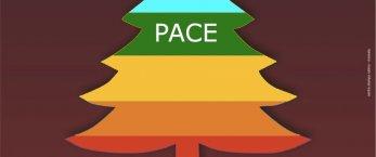 https://www.tp24.it/immagini_articoli/07-12-2019/1575717088-0-petrosino-domani-laccensione-dellalbero-pace.jpg