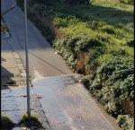 https://www.tp24.it/immagini_articoli/08-01-2019/1546952323-0-marsala-mesi-perdita-dacqua-falcone-nessuno-interviene.jpg