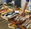 https://www.tp24.it/immagini_articoli/08-04-2019/1554745768-0-pesce-venduto-abusivamente-trapani-ordinanza-sindaco.jpg