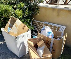 https://www.tp24.it/immagini_articoli/08-04-2021/1617872275-0-rifiuti-nbsp-multati-a-marsala-i-commercianti-del-mercatino-del-martedi-allo-stadio-la-situazione-a-sappusi.jpg