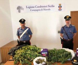 https://www.tp24.it/immagini_articoli/08-07-2019/1562601681-0-scoperta-piantagione-marijuana-centro-marsala.jpg