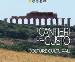 https://www.tp24.it/immagini_articoli/08-07-2020/1594230987-0-annullato-l-evento-i-cantieri-del-gusto-al-parco-archeologico-di-selinunte.jpg