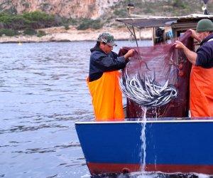 https://www.tp24.it/immagini_articoli/08-10-2018/1538985970-0-favignana-trionfo-sapori-laugghia-pesce-povero-ricchezza-mediterraneo.jpg