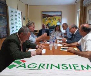 https://www.tp24.it/immagini_articoli/08-11-2019/1573198890-0-sicilia-mobilitazione-agricoltori-chiedere-rilancio-consorzi-bonifica.jpg