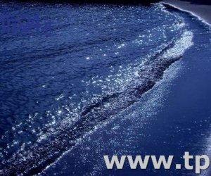 https://www.tp24.it/immagini_articoli/09-04-2017/1491723021-0-amour-Évenementiel-di-antonino-contiliano.jpg