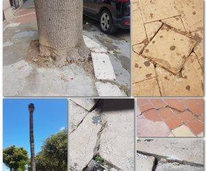 https://www.tp24.it/immagini_articoli/09-06-2019/1560037976-0-marsala-diventera-bellissima-salotto-citta-pericoloso.jpg