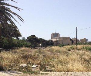https://www.tp24.it/immagini_articoli/09-06-2019/1560063734-0-marsala-decumano-allinterno-parco-archeologico-coperto-dalle-erbacce.jpg