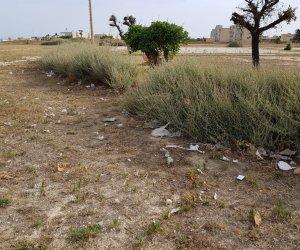 https://www.tp24.it/immagini_articoli/09-07-2019/1562693228-0-erice-stato-ripulito-campo-bianco.jpg