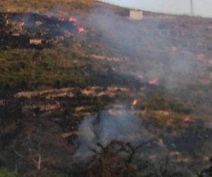 https://www.tp24.it/immagini_articoli/09-07-2019/1562699022-0-ancora-fiamme-erice-divampa-incendio-versante-martogna.jpg
