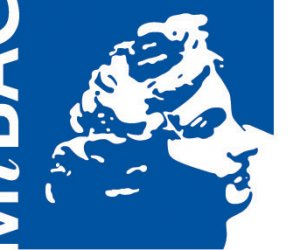 https://www.tp24.it/immagini_articoli/09-09-2015/1441777643-0-bando-per-130-tirocini-formativi-ai-beni-culturali-ecco-come-partecipare.jpg