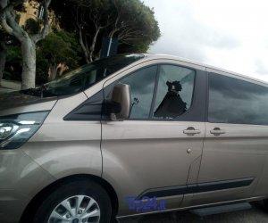 https://www.tp24.it/immagini_articoli/09-11-2019/1573300268-0-vandali-scatenati-notte-trapani-ecco-immagini-auto-danneggiate.jpg