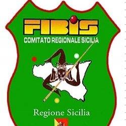 https://www.tp24.it/immagini_articoli/10-01-2018/1515559617-0-campioni-biliardo-siciliano-sabato-domenica-tp24.jpg