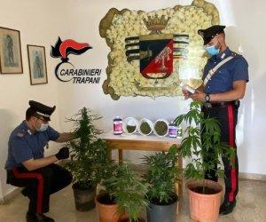 https://www.tp24.it/immagini_articoli/10-06-2021/1623320069-0-coltiva-marijuana-in-casa-arrestato-un-uomo-a-marsala.jpg