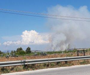 https://www.tp24.it/immagini_articoli/10-07-2018/1531231089-0-marsala-vasto-incendio-corso-campagne-birgi.jpg