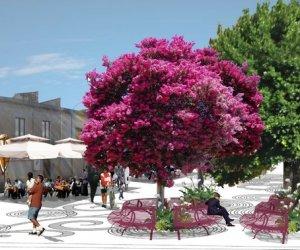 https://www.tp24.it/immagini_articoli/10-07-2020/1594337405-0-trapani-strisce-blu-a-borgo-annunziata-la-petizione-di-un-gruppo-di-cittadini.jpg