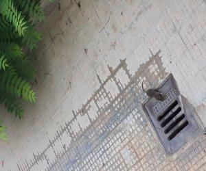 https://www.tp24.it/immagini_articoli/10-09-2021/1631303359-0-marsala-ratti-in-piazza-della-vittoria-e-del-purgatorio.jpg