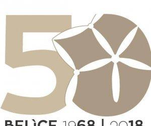 https://www.tp24.it/immagini_articoli/11-01-2018/1515663588-0-valle-belice-19682018-cinquantanni-terremoto-programma-celebrazioni.jpg