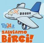 https://www.tp24.it/immagini_articoli/11-01-2019/1547216998-0-aeroporto-trapani-voli-fara-trattativa-privata.jpg