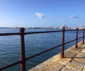 https://www.tp24.it/immagini_articoli/11-01-2020/1578737904-0-italia-nostra-recuperare-sostituire-ringhiera-ghisa-porto-trapani.png