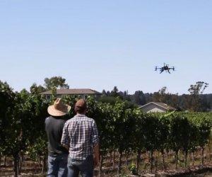 https://www.tp24.it/immagini_articoli/11-03-2016/1457678389-0-un-drone-per-la-viticoltura-il-progetto-delle-cantine-birgi-a-marsala.jpg
