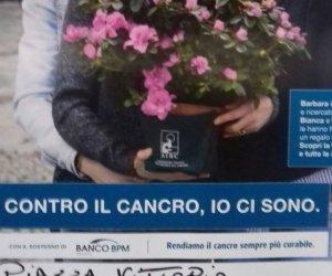 https://www.tp24.it/immagini_articoli/11-05-2018/1526023828-0-trapani-festa-mamma-lairc-vende-azalee-ricerca-cancro.jpg