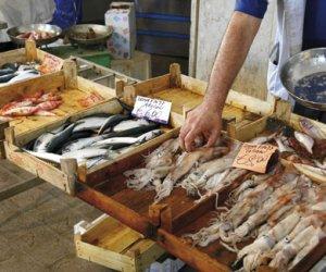 https://www.tp24.it/immagini_articoli/11-05-2018/1526030703-0-trapani-riapre-mercato-pesce-cristoforo-colombo.jpg