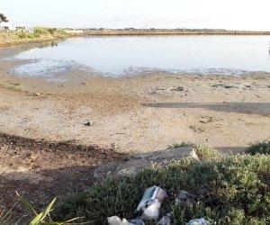 https://www.tp24.it/immagini_articoli/11-06-2019/1560283068-0-scrive-antonino-napoli-rifiuti-spiaggia-lincivilta-marsalesi.jpg