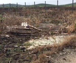 https://www.tp24.it/immagini_articoli/11-07-2019/1562860857-0-percolato-rifiuti-fiamme-cosa-succede-allex-discarica-buttagane-marsala.jpg