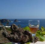 https://www.tp24.it/immagini_articoli/11-08-2018/1533997787-0-scoprire-giardino-mediterraneo-tutto-pronto-pantelleria-festival.jpg