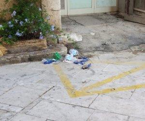 https://www.tp24.it/immagini_articoli/11-09-2018/1536647303-0-rifiuti-topo-morto-davanti-scuola-centro-marsala.jpg