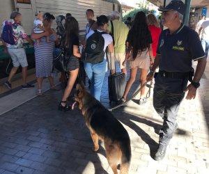 https://www.tp24.it/immagini_articoli/11-10-2019/1570777041-0-sicilia-cane-finanziere-blocca-spacciatore.jpg