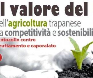 https://www.tp24.it/immagini_articoli/11-11-2017/1510389001-0-trapani-numeri-dellagricoltura-provinciale-presentati-flai-cgil.jpg