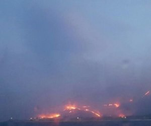 https://www.tp24.it/immagini_articoli/12-01-2018/1515752871-0-incendi-boschi-trapanesi-associazioni-presentano-denuncia-procura.jpg