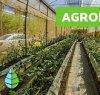 https://www.tp24.it/immagini_articoli/12-01-2021/1610455709-0-nbsp-un-futuro-bio-per-l-agroecologia-in-sicilia.jpg