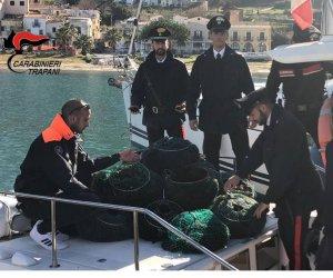 https://www.tp24.it/immagini_articoli/12-03-2019/1552382007-0-pescano-15mila-ricci-golfo-macari-denunciati-palermitani.jpg