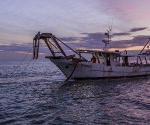https://www.tp24.it/immagini_articoli/12-05-2018/1526114150-0-sicilia-crisi-pesca-anni-persi-pescherecci.jpg