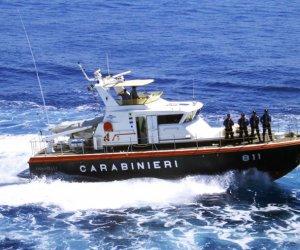 https://www.tp24.it/immagini_articoli/12-06-2019/1560337704-0-pesce-registrato-carabinieri-multano-unazienda-erice.jpg