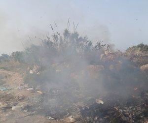 https://www.tp24.it/immagini_articoli/12-06-2019/1560338476-0-marsala-incendiati-rifiuti-amabilina-situazione-insostenibile.jpg