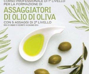 https://www.tp24.it/immagini_articoli/12-08-2019/1565578330-0-castelvetrano-settembre-corso-professionale-assaggiatori-olio.jpg