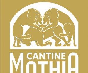 https://www.tp24.it/immagini_articoli/12-09-2018/1536736755-0-cantine-mothia-conquista-bicchieri-gambero-rosso.jpg