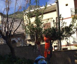 https://www.tp24.it/immagini_articoli/13-01-2019/1547379780-0-castellammare-cittadini-difficolta-economica-puliscono-aree-verdi.jpg