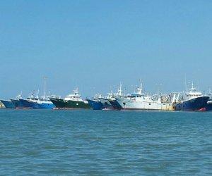 https://www.tp24.it/immagini_articoli/13-01-2020/1578950053-0-mazara-crisi-libica-ripercussioni-marineria-mazarese.jpg