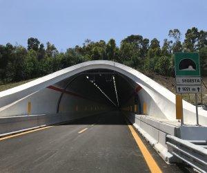 https://www.tp24.it/immagini_articoli/13-01-2021/1610552902-0-sicilia-nuovi-limiti-e-obblighi-europei-per-le-nbsp-gallerie-delle-autostrade-nbsp.jpg