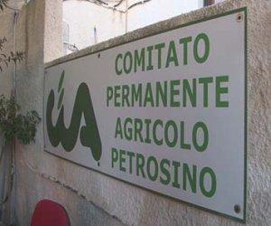 https://www.tp24.it/immagini_articoli/13-02-2017/1486974934-0-la-confederazione-italiana-agricoltori-di-petrosino-scrive-sulla-crisi-del-comparto.jpg