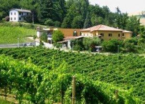 https://www.tp24.it/immagini_articoli/13-02-2019/1550082104-0-agricoltori-siciliani-boccia-sicilia-centrati-obiettivi.jpg