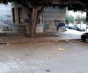 https://www.tp24.it/immagini_articoli/13-02-2020/1581587627-0-santagostino-comune-trapani-corre-ripari.jpg