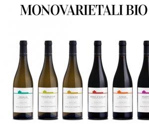 https://www.tp24.it/immagini_articoli/13-03-2018/1520927965-0-linea-vini-biologici-baglio-pianetto.png