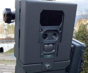 https://www.tp24.it/immagini_articoli/13-03-2019/1552489386-0-trapani-intensifica-lotta-abbandoni-rifiuti-consegnate-fototrappole.jpg
